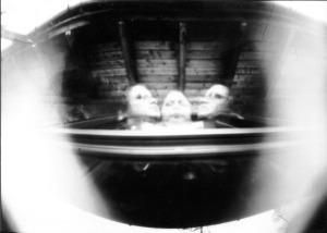 Eine Langzeitbelichtung mit einer Keksdosenlochkamera(Foto. K. Bezzel)