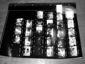 Auf dem fertigen Kontaktbogen sind alle Bilder als Miniaturfotos im Kleinbildformat zu erkennen.