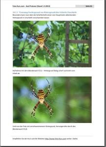 Auf www.foto-kurs.com und im E-Book finden sich viele Fotobeispiele.